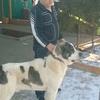 иван, 29, г.Волгодонск