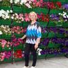 Валентина Николаевна, 66, г.Фокино