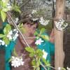 ирина, 29, г.Егорлыкская