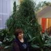 Валентина, 59, г.Нижние Серги