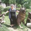Nina, 60, г.Ереван