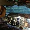 skyfly, 35, г.Limerick