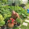 Юлия, 62, г.Котлас